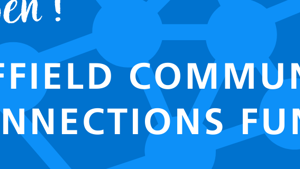 The Community Connections Fund